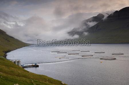 salmon farming in hvannassund near vidareidi