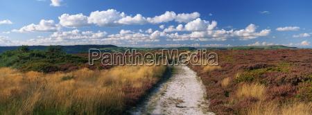 footpath crossing hardown hill on the