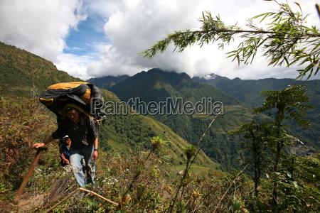 nepali porter carries a heavy load