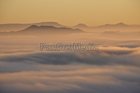 cloud layer at dawn mountain zebra