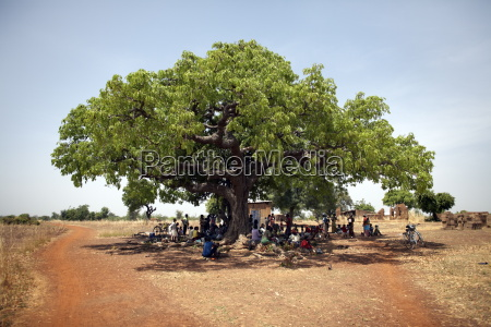 villagers gather under a large tree