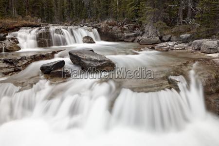 falls on nigel creek banff national