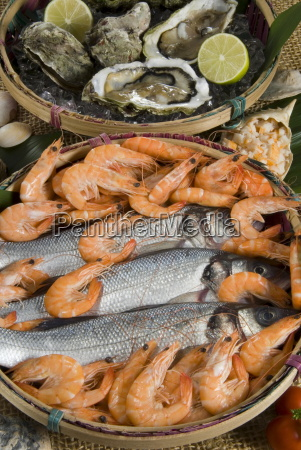 prawns oysters and sea bass