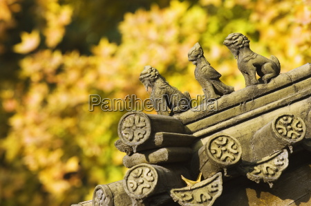 autumn colours and ornamental chinese style