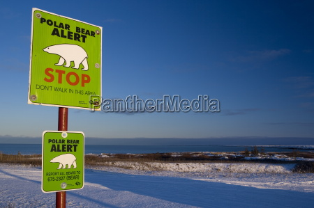 sign polar bear alert at hudson