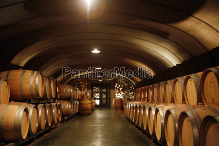 wine cellar at the vistalba winery