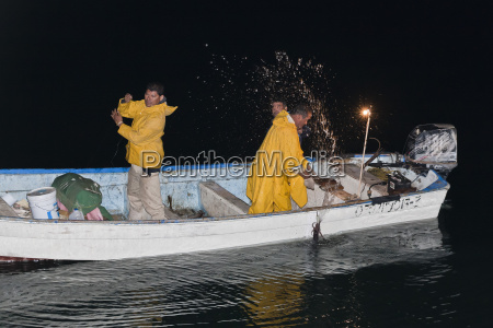 night time panga squid fishery santa