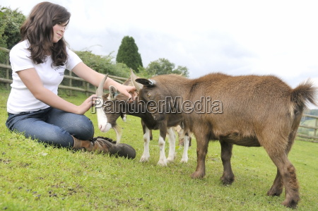 girl stroking the heads of two