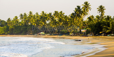 mirissa beach at sunset south coast