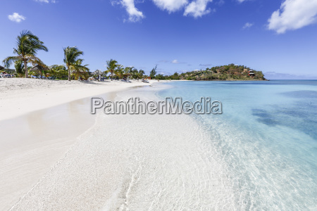 palm trees and white sand surround
