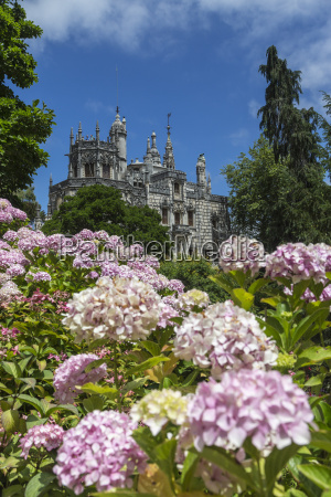 flowers frame old mystical buildings of
