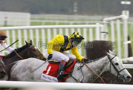 richard johnson riding rooster booster in