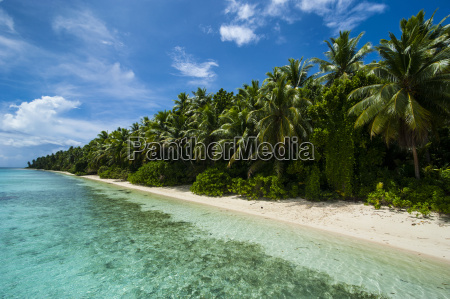 paradise white sand beach and turquoise