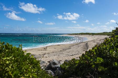 remote white sand beach in barbuda