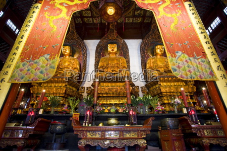golden buddhas in the grand hall