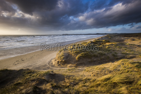 sunlight in stormy weather and gale
