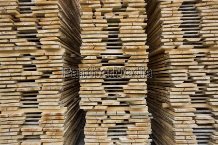 beech planks stacked for seasoning at