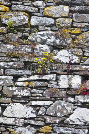 dry stone wall of a franciscan