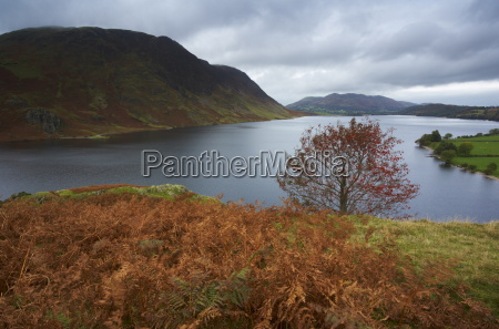 a moody autumn day at crummock