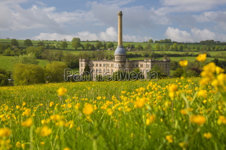 bliss mill with buttercups chipping norton
