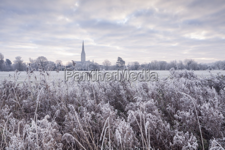 salisbury cathedral at dawn in winter