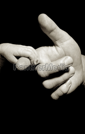 baby hand holding by adult