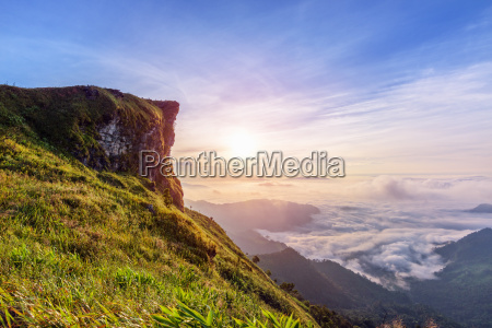 sunrise on phu chi fa forest