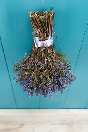 a bunch of lavender hangs to