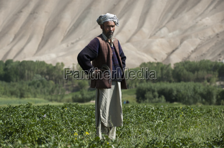 the barren hills of the bamiyan