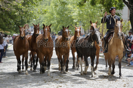 gaucho parade on the day of