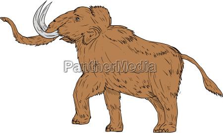woolly mammoth prancing drawing