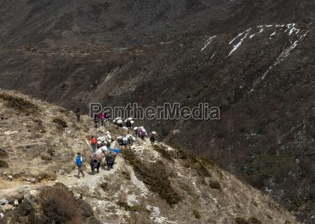 nepal himalaya khumbu trekkers and pack