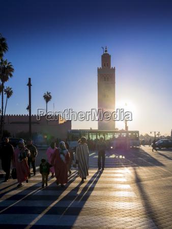 africa morocco marrakesh tensift el haouz