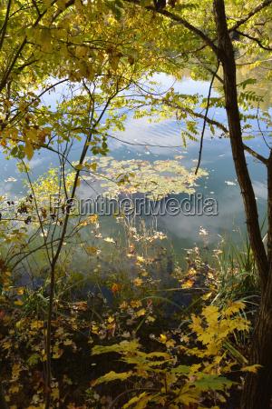 germany bavaria aschheim lakeshore in autumn