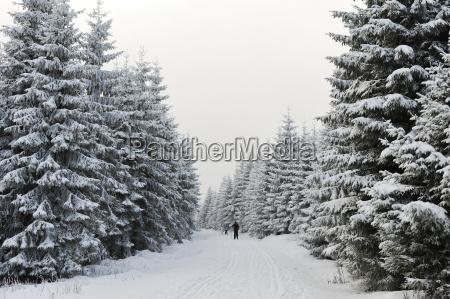 germany thurinigia oberhof cross country skiers