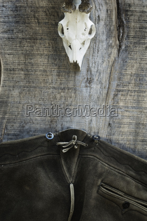 antler of roe deer and leather