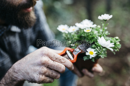 man pruning flower in his garden