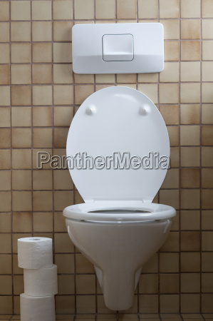 germany interior of toilet with tissue