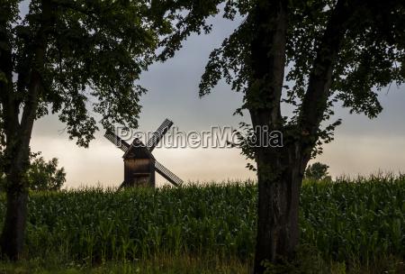 germany brandenburg beelitz bockmuehle at field