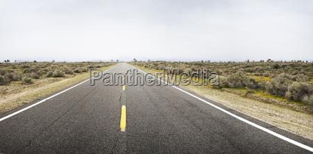 usa california empty road in deserted