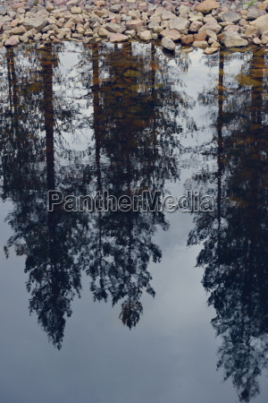 sweden orsa reflection of trees in