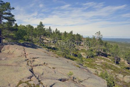 sweden oernskoeldsvik landscape in skuleskogen national