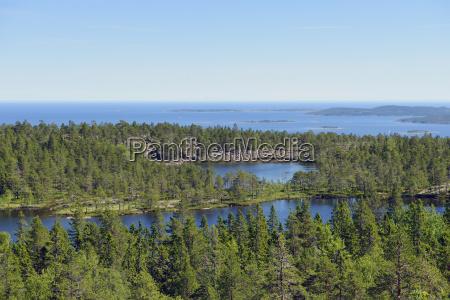 sweden oernskoeldsvik skuleskogen national park with