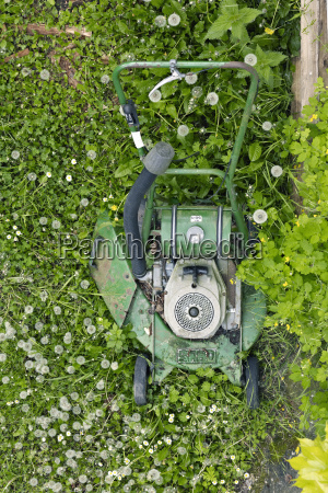 old green lawn mower standing on