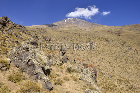 iran mazandaran province vegetation at mount
