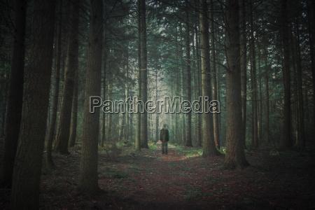 person walking in dark forest alienation