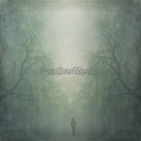 person walking through misty forest composite