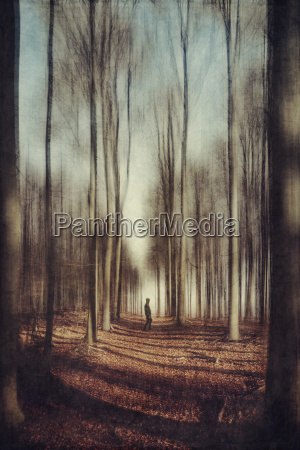 man on forest path blurred