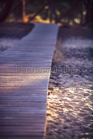spain andalusia huelva wooden boardwalk through