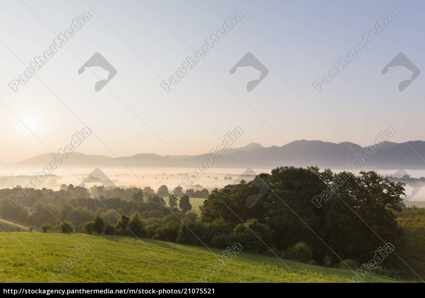 germany, , bavaria, , view, of, murnauer, moos - 21075521